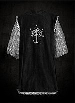 Black Surcoat with Silver Trim