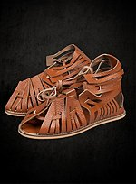 Classic Sandals Brown