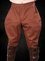 Steampunk Knickerbocker gestreift