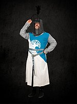 Sir Bedevere Tunic