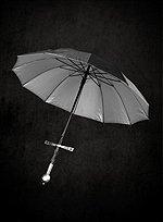 Langschwert-Schirm